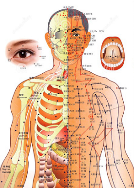 acupuncture energy points chart
