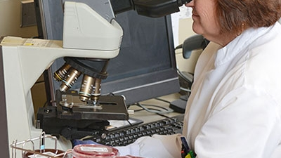 technician looking through microscope