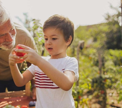 grandfather teaching grandson about gardening