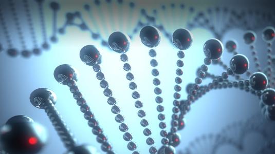 3D model of DNA strand