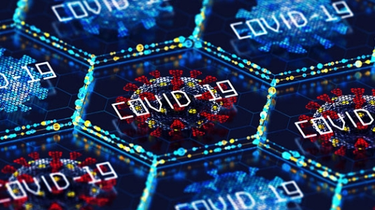 COVID-19 molecules